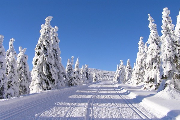 Tsjechië wintersport