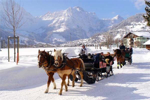Engelberg-Titlis dorp en paardenkoets